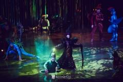 cirque_du_soleil_varekai_bologna_2016