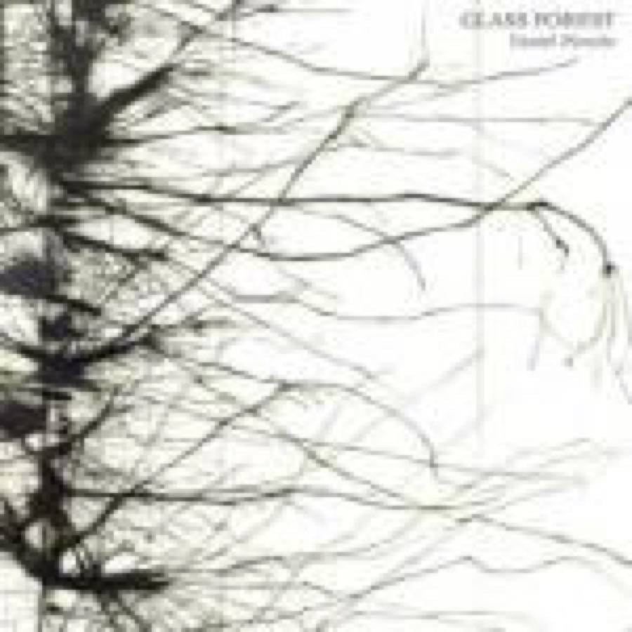 Glass Foerst