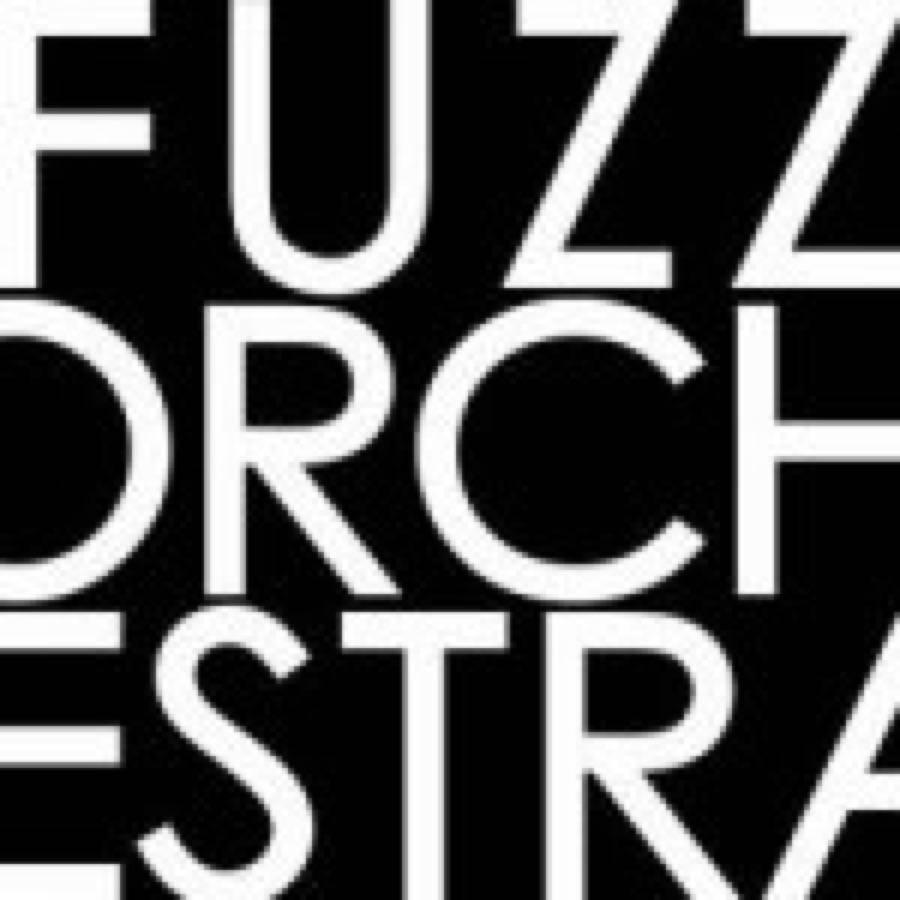 Fuzz Orchestra – Comunicato N.2