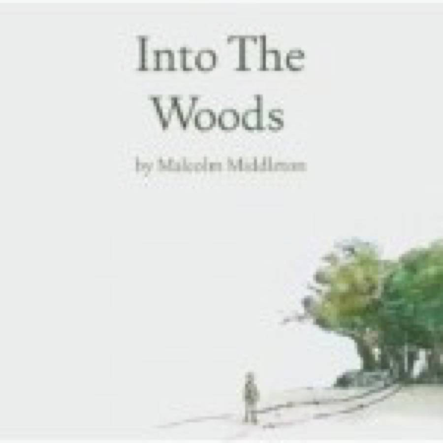 Malcolm Middleton – Into The Woods