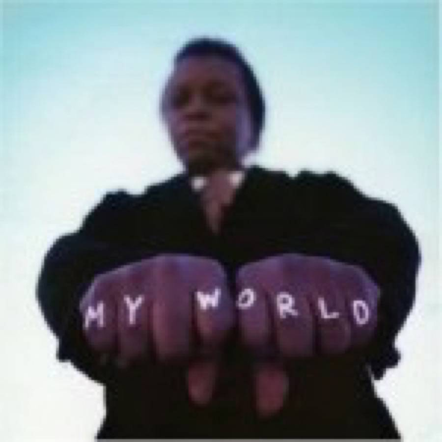Lee Fields & The Expressions – My World