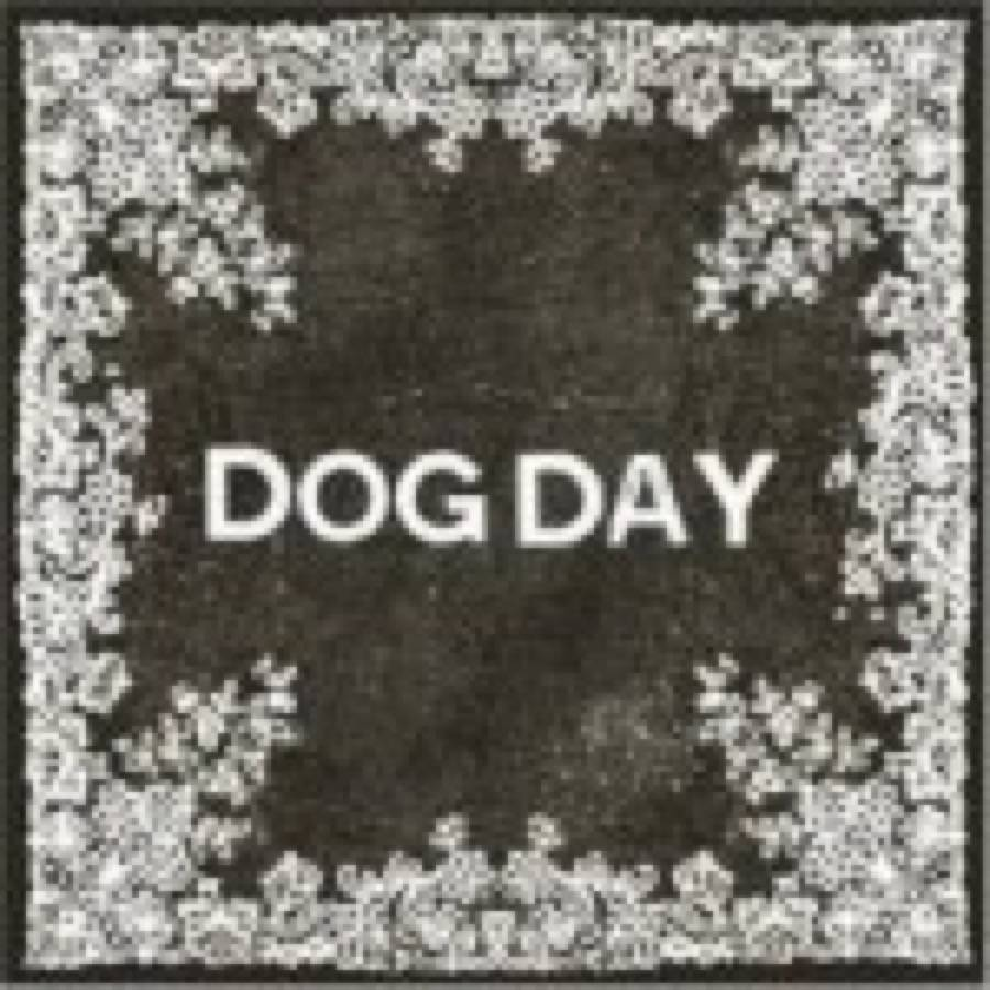 Dog Day – Night Group