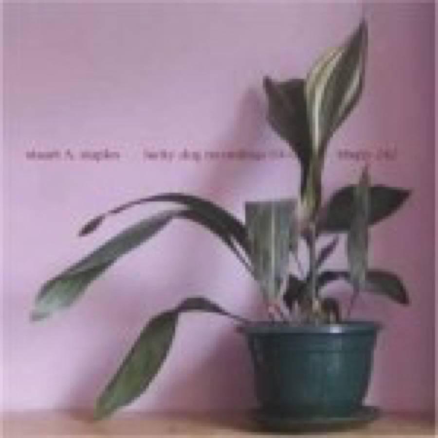 Stuart  A Staples – Lucky Dog Recordings 03-04