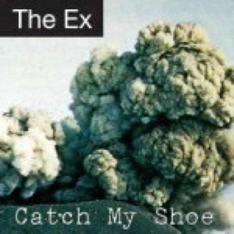Ex (The) – Catch My Shoe