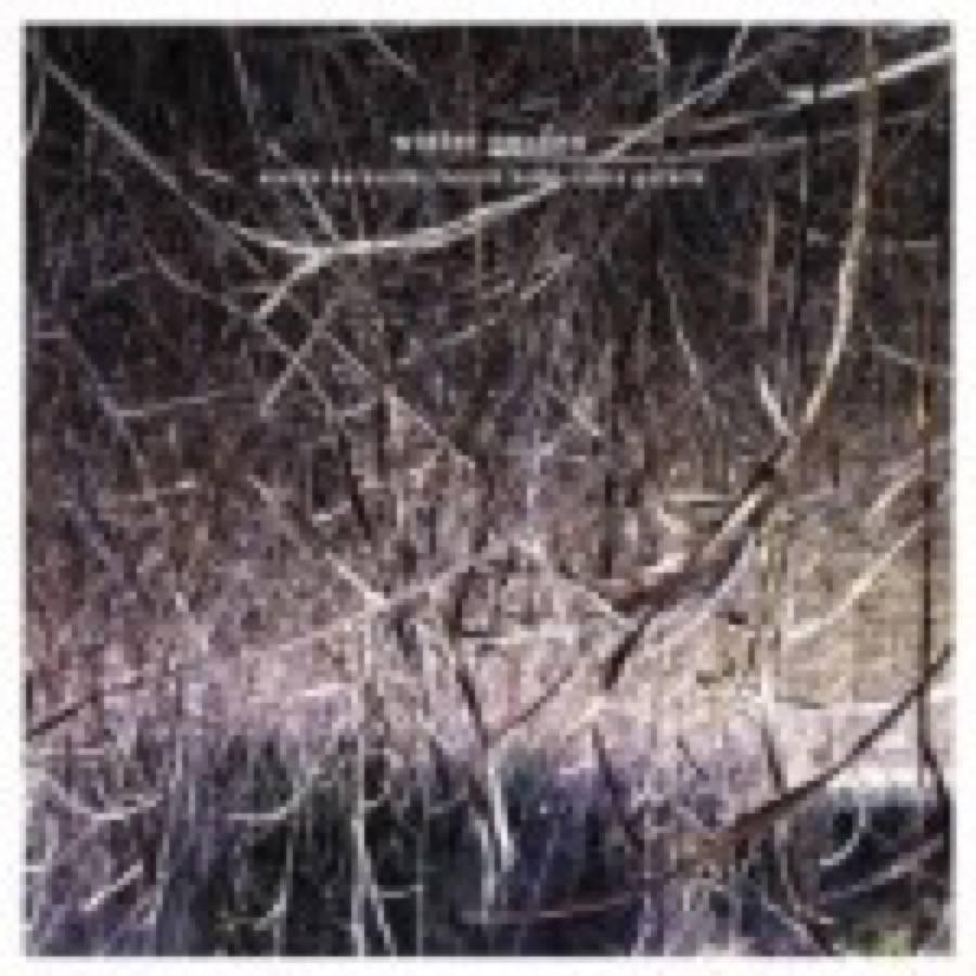 Eraldo Bernocchi – Winter Garden