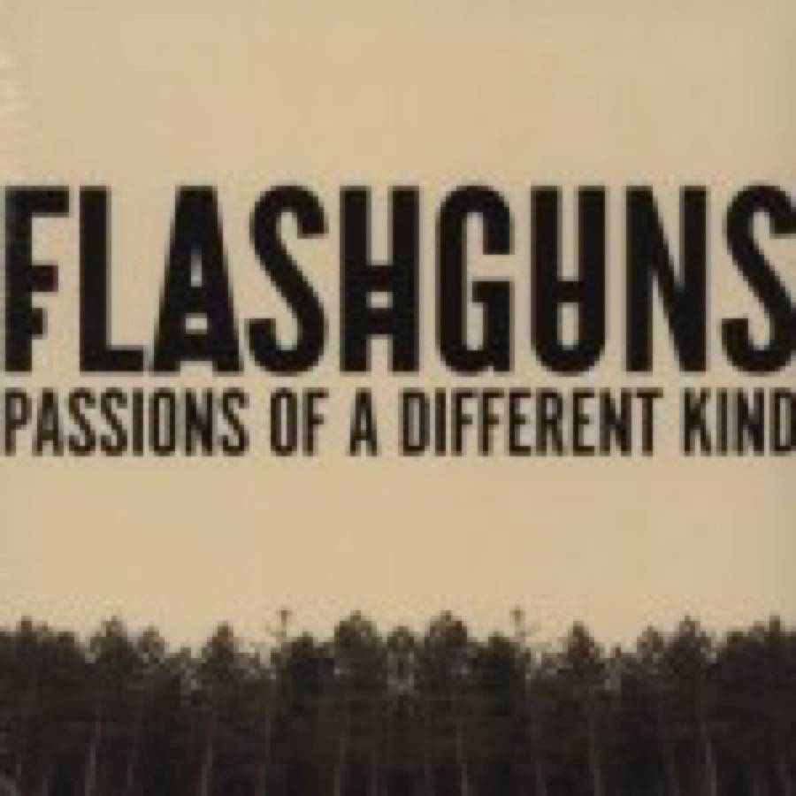 Flashguns – Passions of A Different Kind