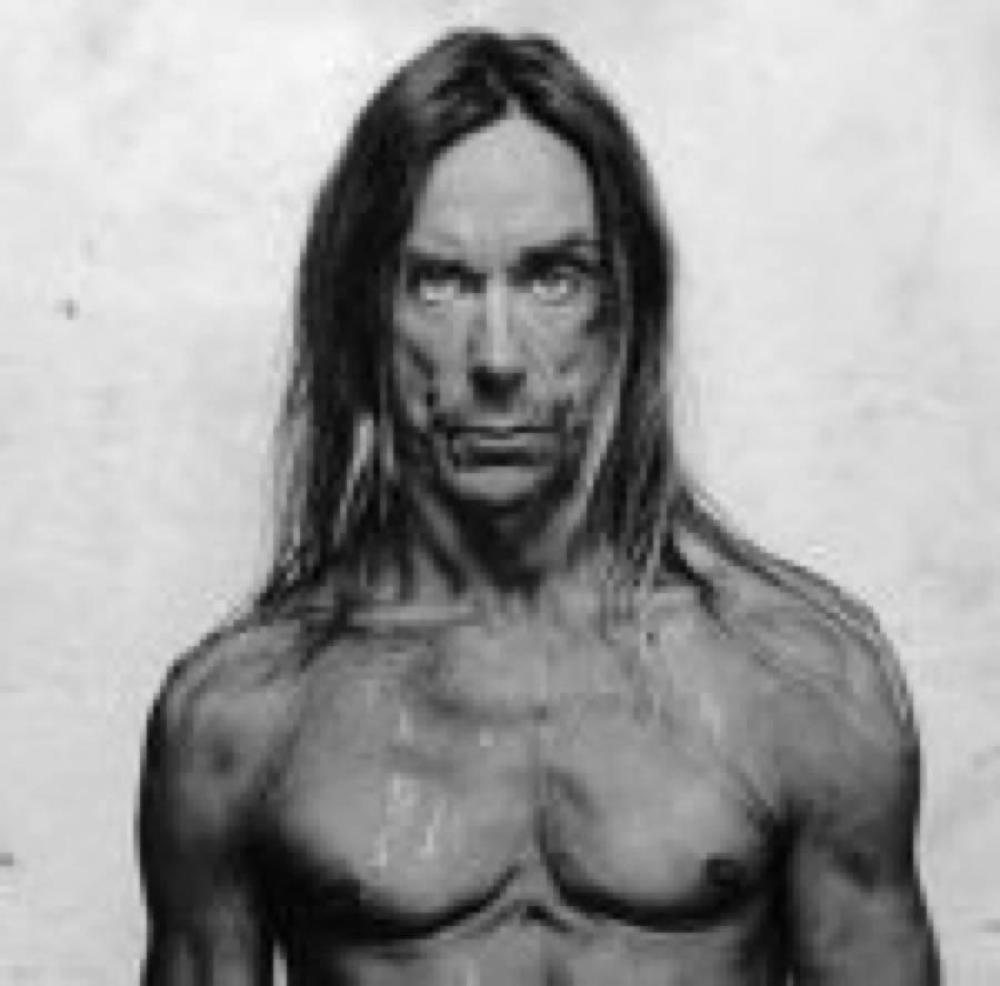 Stooges: Iggy si fa male, tour rinviato e rumours nuovo album