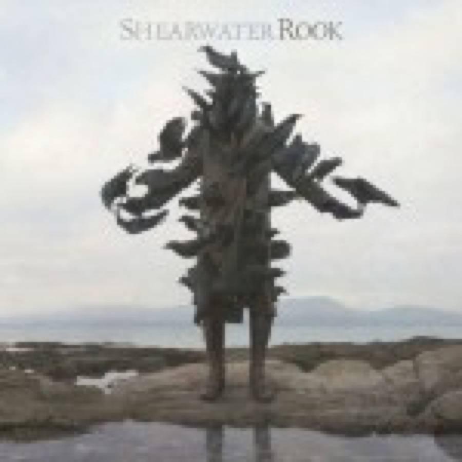 Shearwater – Rook