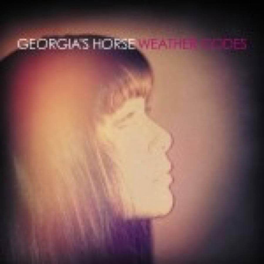 Georgia's Horse – Weather Codes