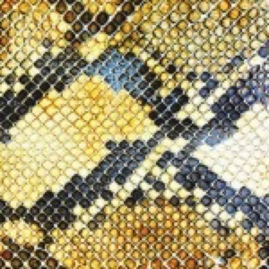 The Amazing Snakeheads – Amphetamine Ballads