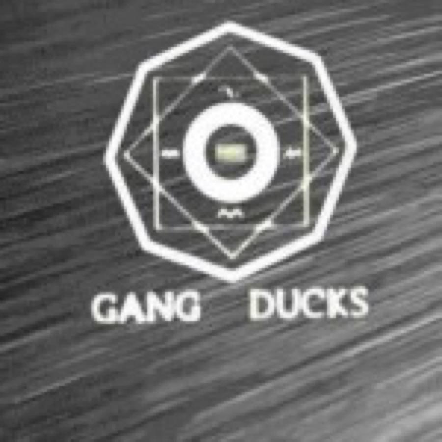 Gang of Ducks