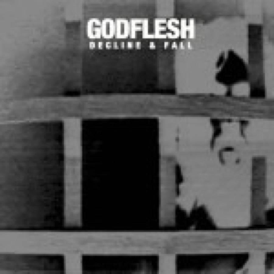 Godflesh – Decline & Fall
