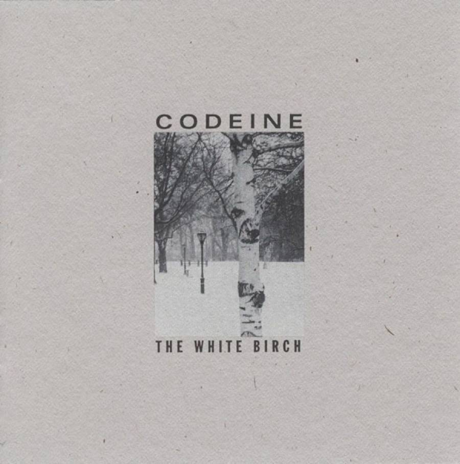codeine_the white birch