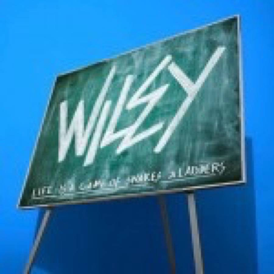 Wiley – Snakes And Ladders