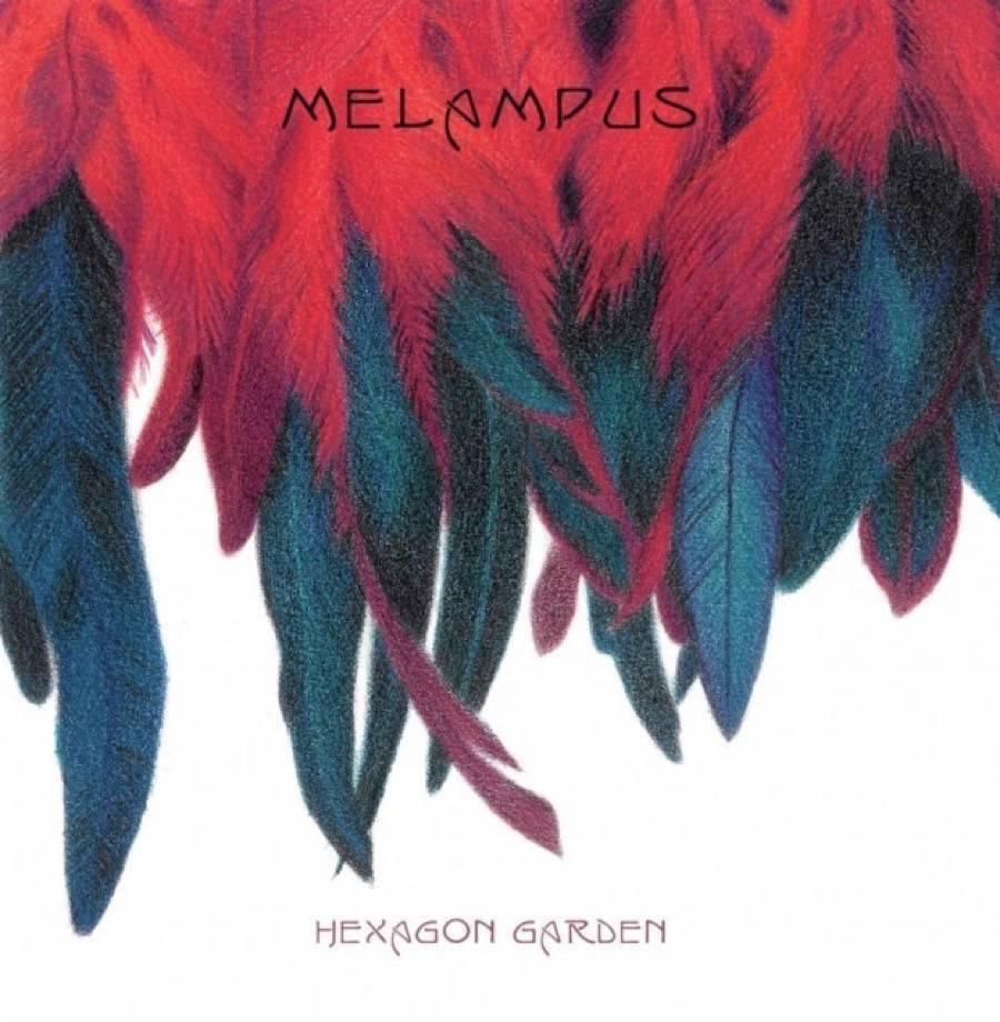 melampus-Hexagon-Garden