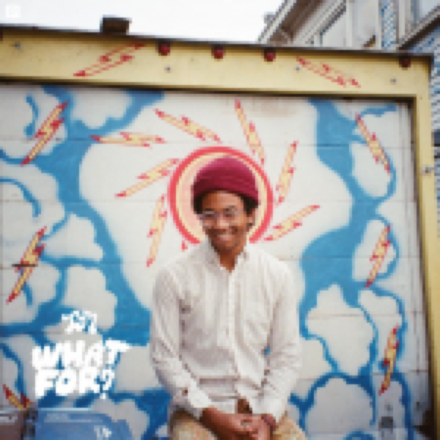 Toro Y Moi – What For?