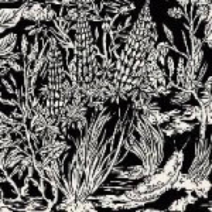 Eternal Tapestry – Wild Strawberries