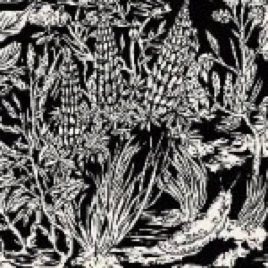 Eternal Tapestry – Wild Strawberries