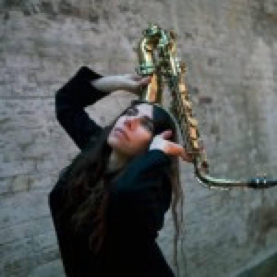 PJ Harvey: in vendita i testi del nuovo album