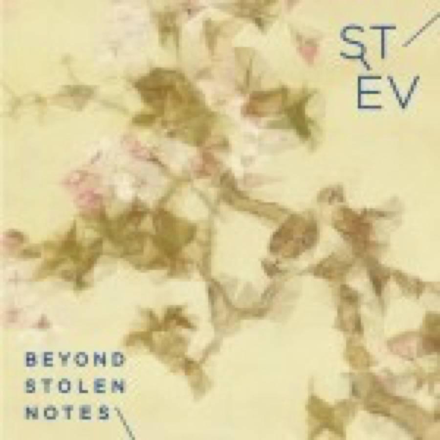 Stèv – Beyond Stolen Notes