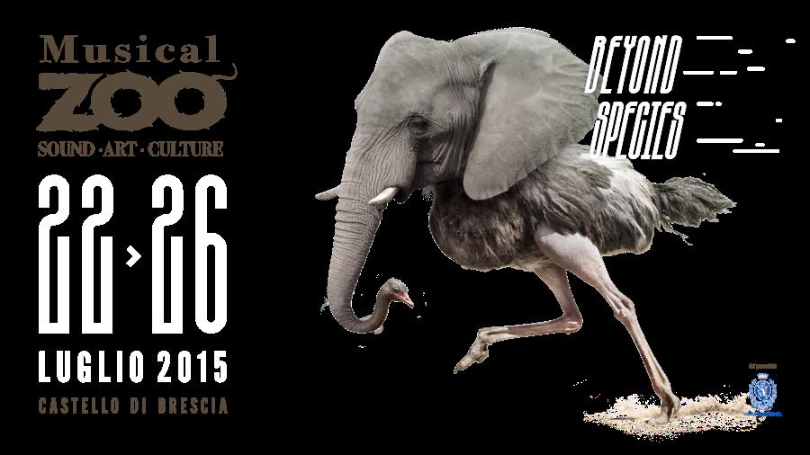 musical-zoo-2015