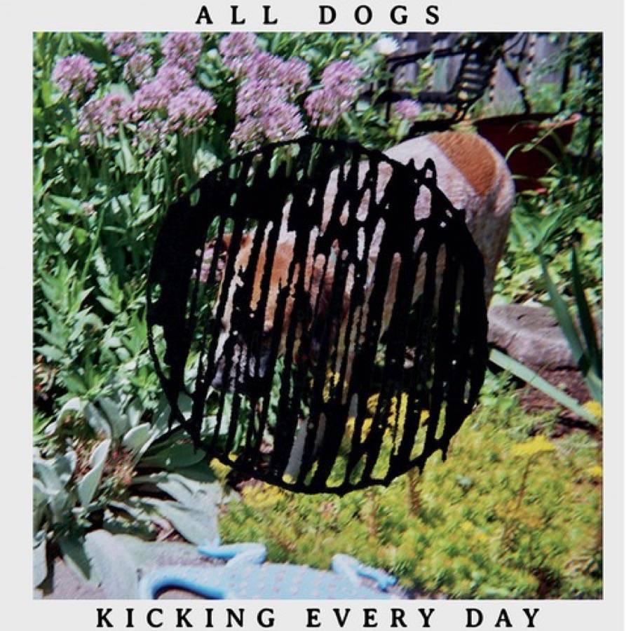 Kicking Every Day