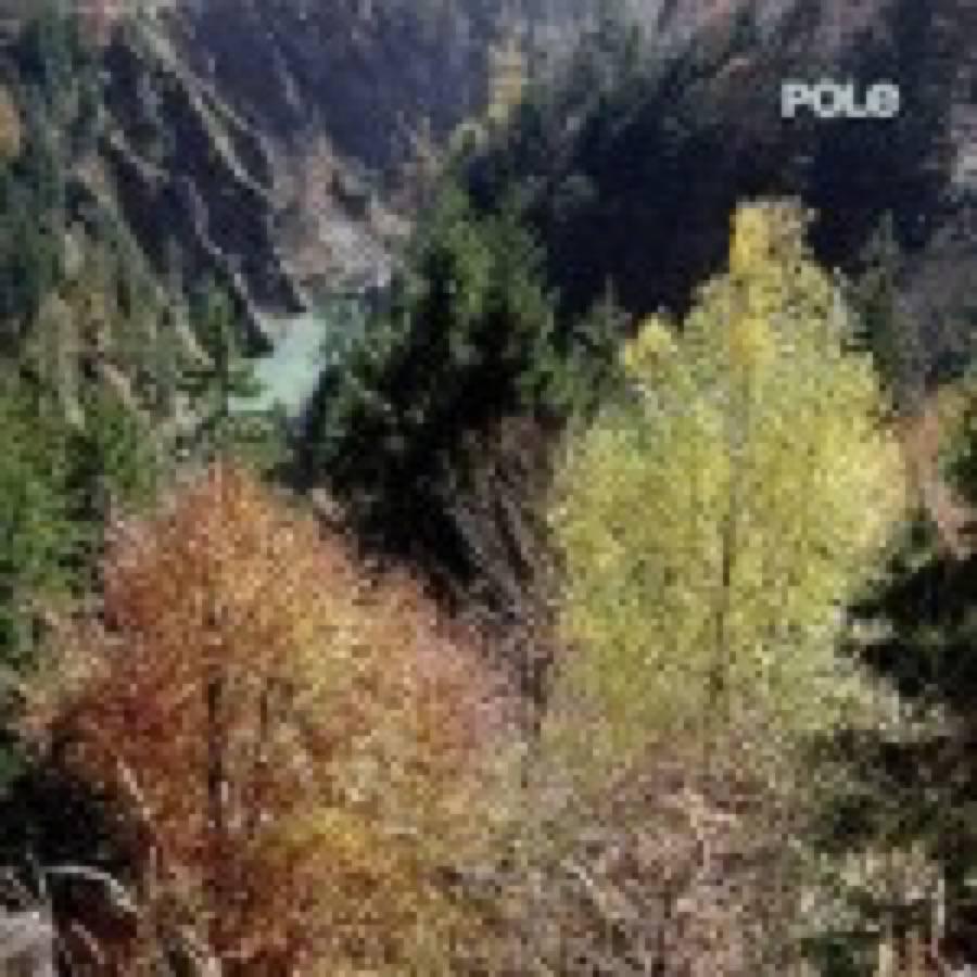 Pole – Wald