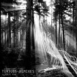 Turtles Remixes