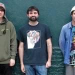 Animal Collective, spunta del materiale inedito
