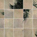 Touché Amoré – Palm Dreams