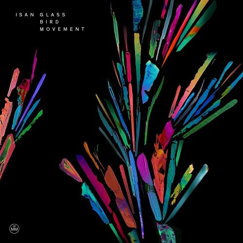 isan_glass_bird_movement