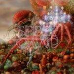 Spidergawd – IV