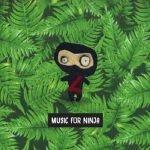 Music for Ninja