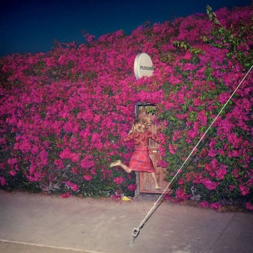 Feist – Pleasure
