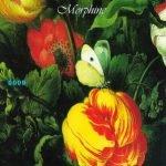 Morphine – Good
