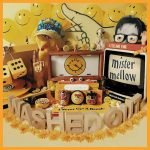 Washed Out – Mister Mellow