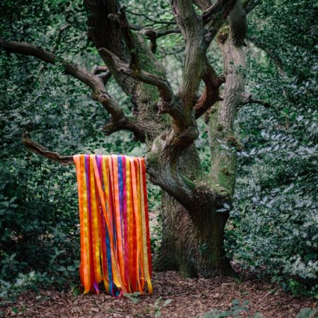 James Holden & The Animal Spirits