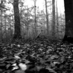 Soft Cell – Martin (Hallowe'en Mix)