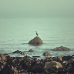 Flow #128 – In mezzo al mare