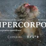 Ipercorpo 2019