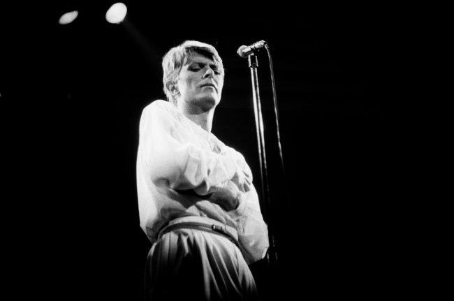Bowie, live 1978 © Esther Friedman 2019