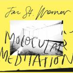 Jan St. Werner – Molocular Meditation