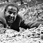 """La Berlinale omaggia Fellini con la proiezione de """"Il bidone"""" restaurato in 4K"""