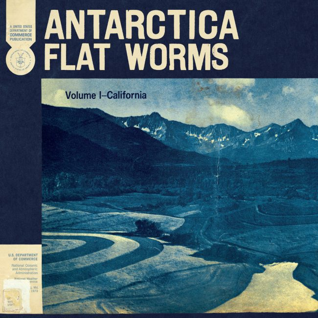 Flat Worms – Antarctica